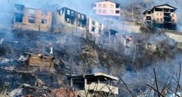 Artvin'deki yangın felaketinin boyutu