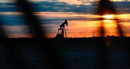 Petrol talebinin geleceğini temiz enerji belirleyecek