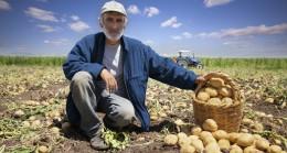 Yaşlı nüfusun iş gücüne katılımı en fazla tarım sektöründe